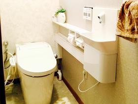 清掃性や収納力だけでなくデザイン性も高いエレガントなトイレ