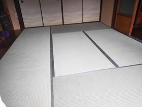 日本の伝統 畳!品質の良いイ草のいい匂いで気持ちも落ち着く
